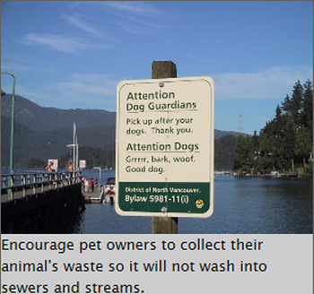dog poop disposal hazards