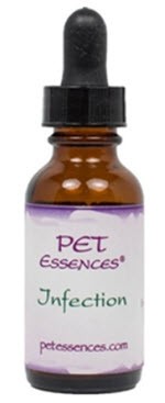 Flower essences for treating pain in dogs